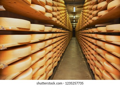 Gruyeres, Switzerland - December 11, 2009: Rows of cheese maturing in a cellar of a cheese factory in Gruyeres, Switzerland.