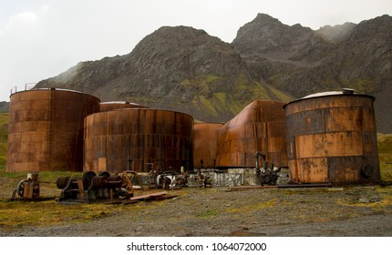 Grytviken, abandoned whaling station in South Georgia