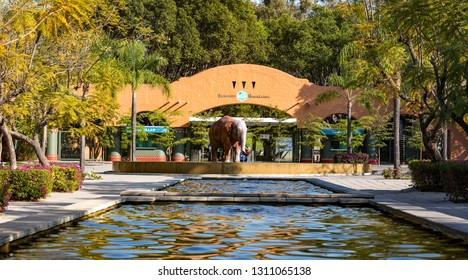 GUADALAJARA, MEXICO - January 1 2016 - The Guadalajara Zoo. As the first true zoo of the city, and the largest in the state of Jalisco, the park has been enormously successful.