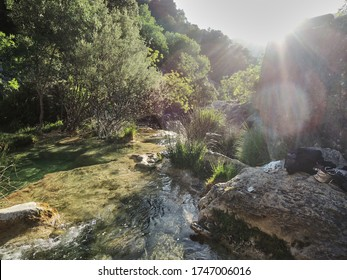 The Guadalquivir river as it passes through the Cerrada de Utrero in the Sierra de Cazorla, Segura and Las Villas. Jaén. Andalusia. Spain