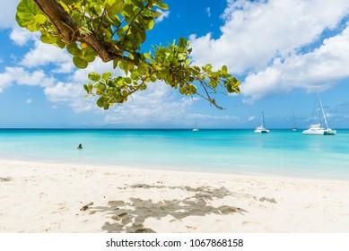Guadeloupe beach, France