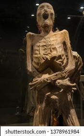 Guanajuato, Guanajuato/ Mexico March 27-2019>> Photo of mummy taken from the Guanajuato museum, the biggest exhibition of mummies in Mexico.