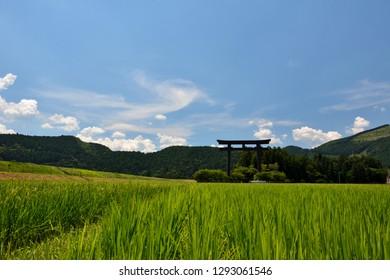 guard frame at the entrance to a Shinto shrine, rice field, blue sky - Kumano Hongu, Japan