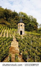 Guardtower in a vineyard on the southern slopes of Drachenfels mountain in autumn between Koenigswinter and Bad Honnef-Rhoendorf, North Rhine-Westphalia, Germany, Europe