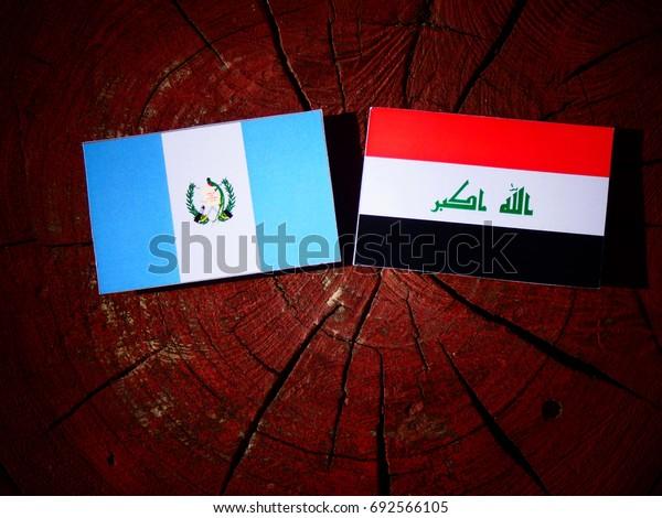 Guatemalan flag with Iraqi flag on a tree stump isolated