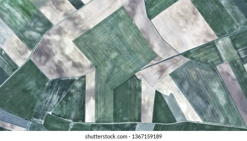 the Guernica tree, composition in white and green, tribute to Picasso, abstract photography of the Spain fields from the air, aerial view, representation of human labor camps, abstract art,