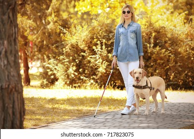 Guide dog helping blind woman in park