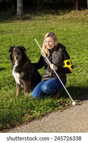 A guide dog sitting next to a blind woman on a meadow