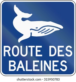 Guide and information road sign in Quebec, Canada - Whale route.