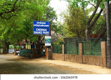GUINDY, CHENNAI, TAMIL NADU, INDIA, APRIL 01, 2018: Ticket counter of Snake Park in Guindy, started by herpetologist Romulus Whitaker. India's first reptile park.