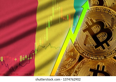 Guinea flag and cryptocurrency growing trend with many golden bitcoins