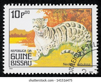 GUINE-BISSAU - CIRCA 1984: A stamp printed in Cuba shows Neofelis Nebulosa, series devoted to wilidlife animals, circa 1984
