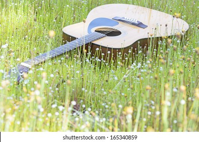 Guitar in field of wild flower on sunny day