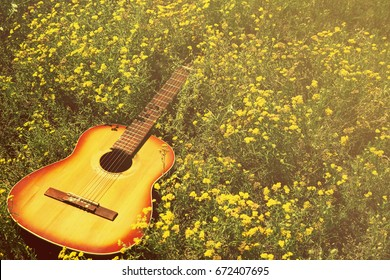 The guitar lies on the ground, the concept: a song about summer, music in colors, a flower garden, toned