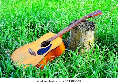 Guitar on green grass rests on a stump