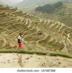 GUIZHOU PROVINCE; CHINA - APRIL 10: 10 years old girl in rice terraces, near village of ethnic minority Miao, April 10, 2010. Basha Miao Village, Congjiang County, Southeast Guizhou, Southwest China.