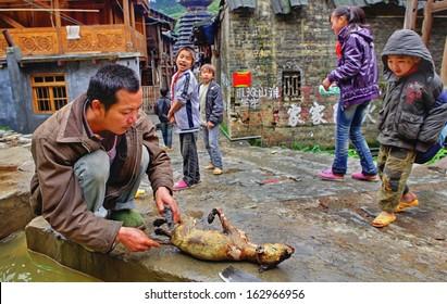 GUIZHOU PROVINCE, CHINA - APRIL 13:  Rural China, Before eating the dog, Cutting up carcass to eviscerate, Zengchong village, Guizhou, April 13, 2010.