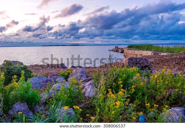 Gulf of Finland. Saint Petersburg..