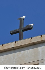 gulls couple on the cross