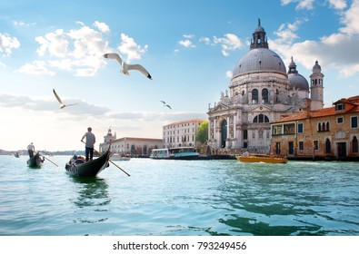 Gulls over Grand Canal
