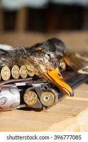 Gun, hunting, a dead duck, and ammunition on the table