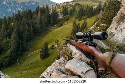Gun prepared for hunting