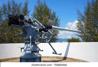 gun war tree blue sky on base