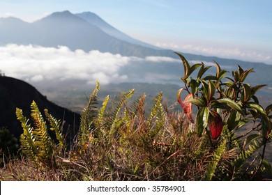 Gunung Batur volcano in Indonesia