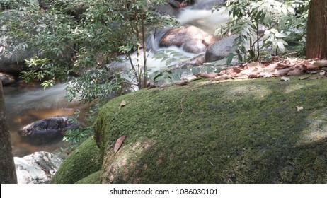 Gunung Ledang Malaysia. Waterfall at Malaysia