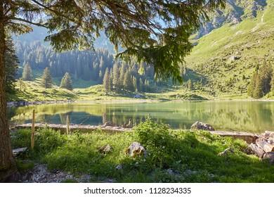 Gurnigel Gantrisch Region Bernese Alps, Lake