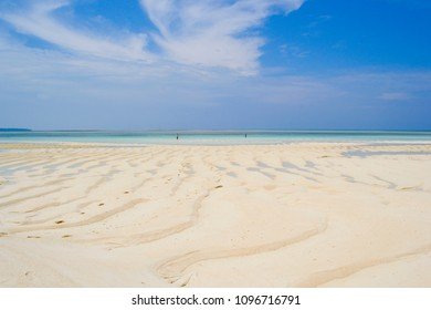 Gusung Pasir island is an island which emerges only when the sea subsides. The sand is patterned according to the sea waves pattern. Location: Gusung Pasir, Derawan Islands, Borneo, Indonesia