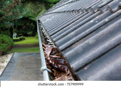 Gutter blocked by leaves