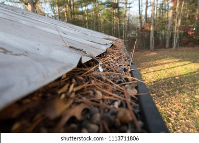 Gutters full of debris needing to be cleaned