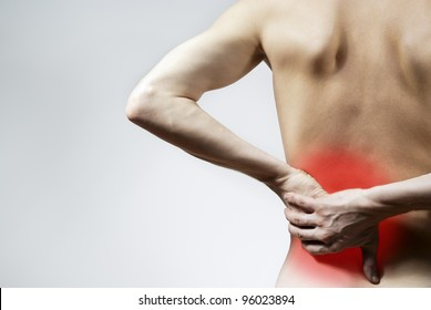 the guy back pain and back pain