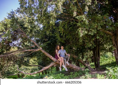 Guy with a girl on a tree