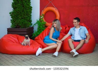 Astonishing Imagenes Fotos De Stock Y Vectores Sobre Pug Chair Dog Machost Co Dining Chair Design Ideas Machostcouk