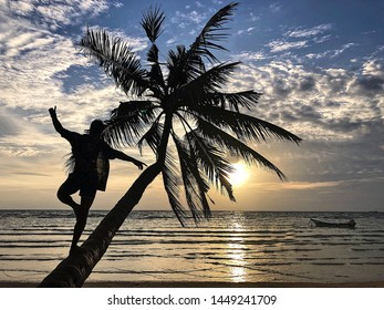 Guy on a palm in koh tao sunset (thailand)