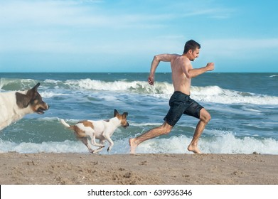 guy running away from angry dogs. Dogs chases to bite