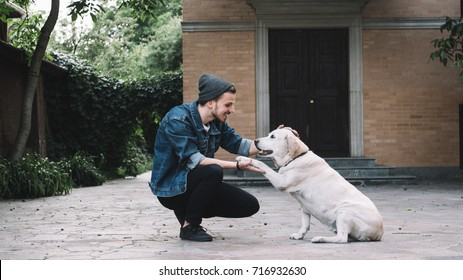 A guy is squatting near the golden labrador at the backyard in a beautiful bright day. He is holding the dog's paw in his right hand while stroking on the animal's head with left hand. The guy is