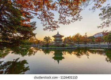 Gyeongbokgung Palace and Soft focus of Maple tree in autumn,Seoul Korea.