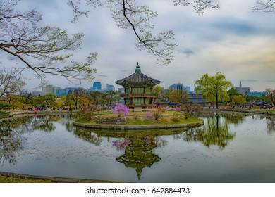 gyeongbokgung palace in spring seoul city korea