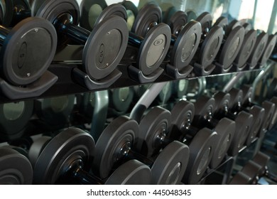 Gym weights and equipments on a sunny day