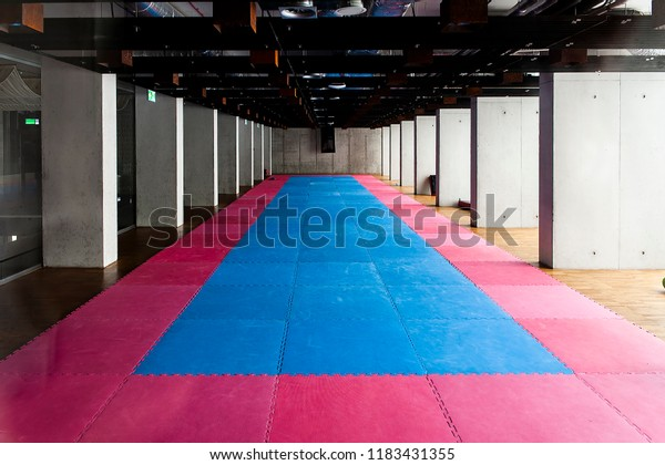 Gymnasium Martial Arts Training Tatami Mat Stock Photo (Edit