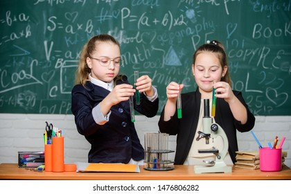 Gymnasium students with in depth study of natural sciences. School project investigation. School experiment. Girls school uniform excited proving their hypothesis. School for gifted children.