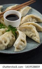 Gyoza asian dumpling on the plate