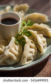 Gyoza dumpling on a plate