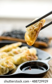 Gyoza dumplings in Japanese plate on wooden table , popular japanese food