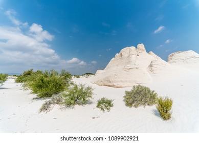 Gypsum dunes of  Cuatro Ciénegas in Coahuila, Mexico - White sands