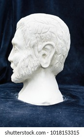 Gypsum sculpture of an unknown man
