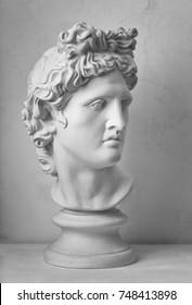 Gypsum statue of Apollo's head. Man. Statue.